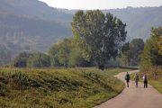 Hiking in green Istria