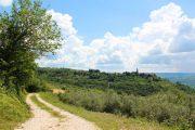 Istria walking trail