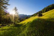 Gsiesertal-Valle di Casies in the Italian Tyrol