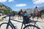 Knights along the Ciro Trail!