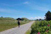 The North Sea Trail in Kjul, between Hirtshals and Tversted