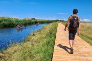 Boardwalk along the Uggerby river