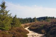 Vandresti på The Wicklow Way med det ikoniske bjerg Sugar Loaf i baggrunden
