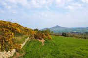Udsigt til Great Sugar Loaf Mountain langs The Wicklow Way