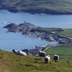 Vandreferie i Irland