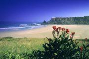 Den smukke strand Praia de Odeceixe (Foto: Antonio Sacchetti)