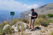 Punta Campanella loop walk