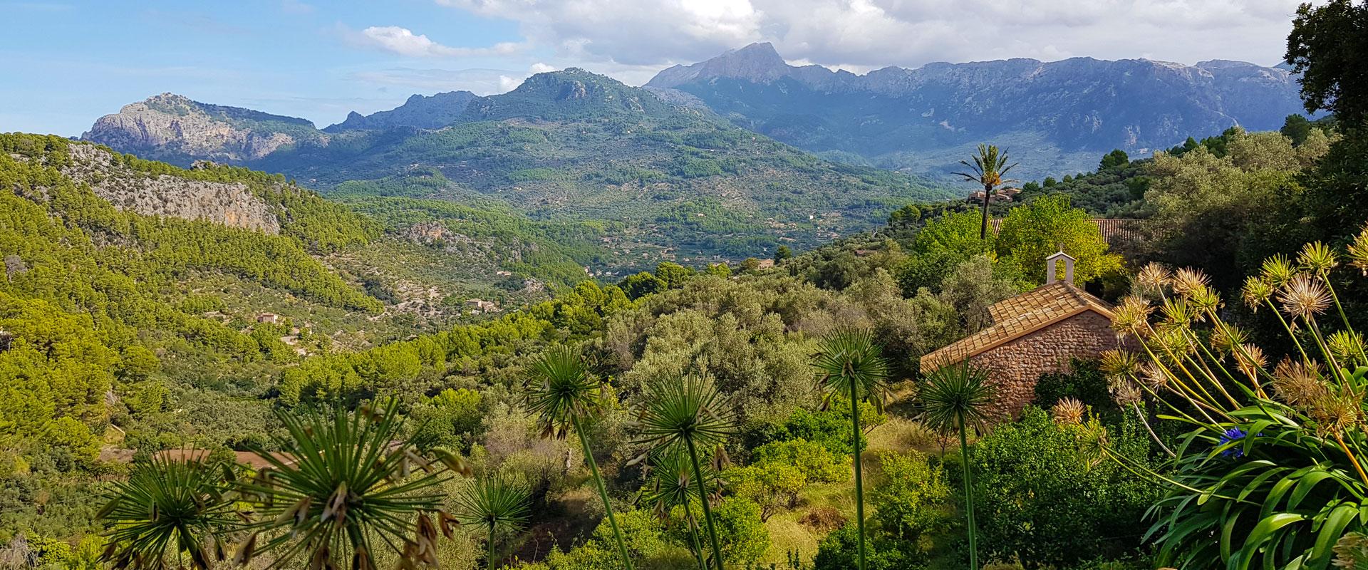Vandring Pa Mallorca Wild Rover Travel Dk Vandring Pa Egen Hand