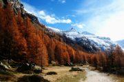 Gran Paradiso hiking