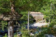 Niolu Valley, Corsica
