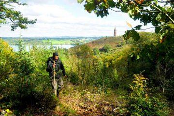 Skovvandring langs Himmelbjergruten med udsigt til Himmelbjerget