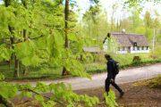 Vandrer, bøgeblade og stråtækt bindingsværkshus på Himmelbjergruten.