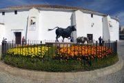 Andalusien er tyrefægtningens højborg. Her ses Plaza de Toros i Ronda med byens tyrefægterarena.