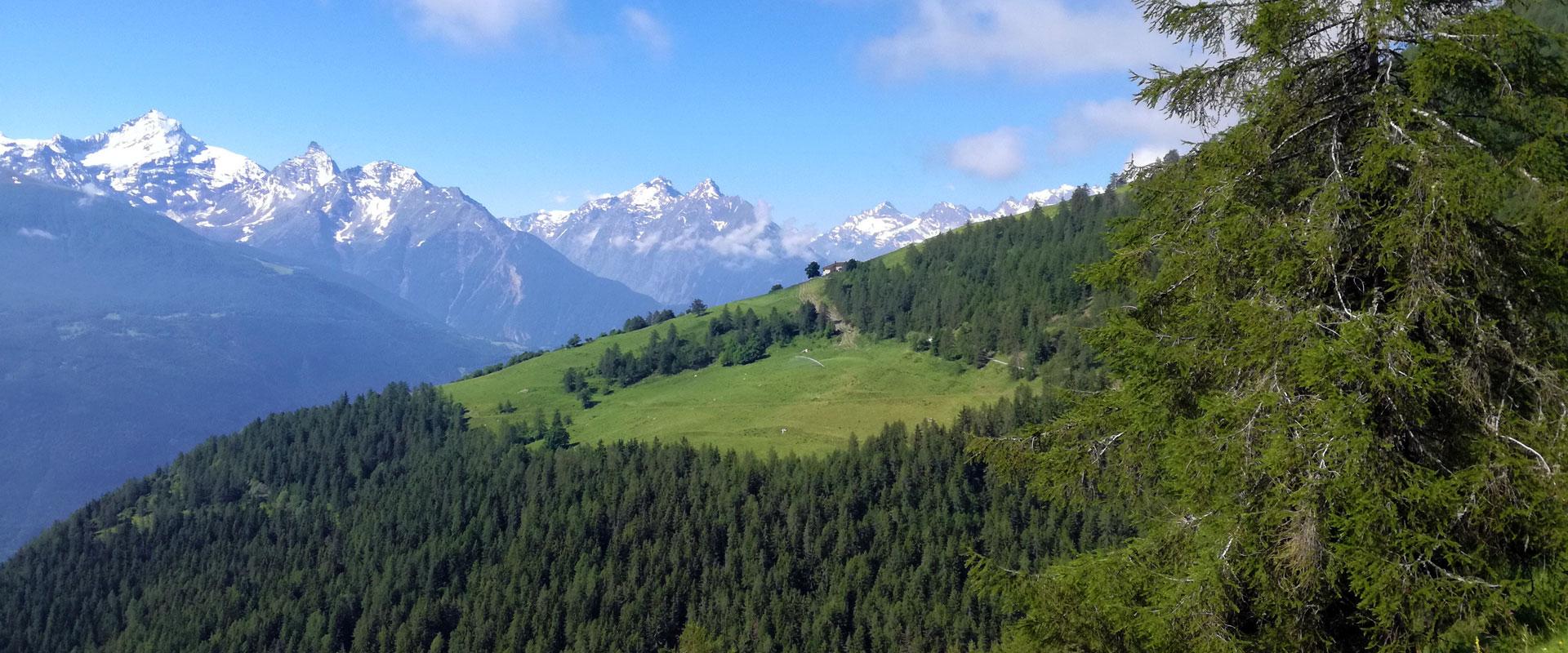 Alperne: Valle d'Aosta