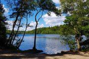 Slåensø er Danmarks reneste sø og skøn at bade i