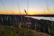 Smuk solnedgang set fra Himmelbjerget