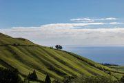 Flot landskab paa Sao Miguel i Azorerne