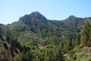 San Mateo bjergene