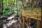 Gran Canaria hiking routes
