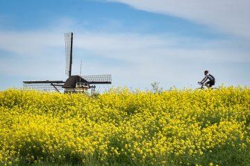 Cykeltur i Nordholland