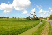 Delft vindmølle og cykelsti