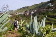 Vandring blandt kaktusser på vej mod La Lechuza
