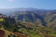 På vej ned i den smukke, frodige kløft Barranco de Azuaje