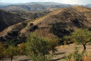 Udsigt over landskabet i Las Alpujarras