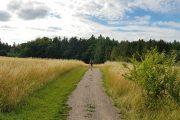 Vandring fra Horsens til Østbirk