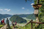 Den imponerende flodbugtning Schlögener Schlinge (c) Oberoesterreich Tourismus GmbH / Ralf Hochhauser