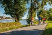 Cykling langs Donau, Krems (c) Oesterreich Werbung / Martin Steinthaler