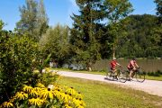 Cykling langs Donau ©OÖ Tourismus Erber
