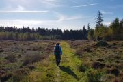 Hærvejsvandring mellem Dollerup og Thorning