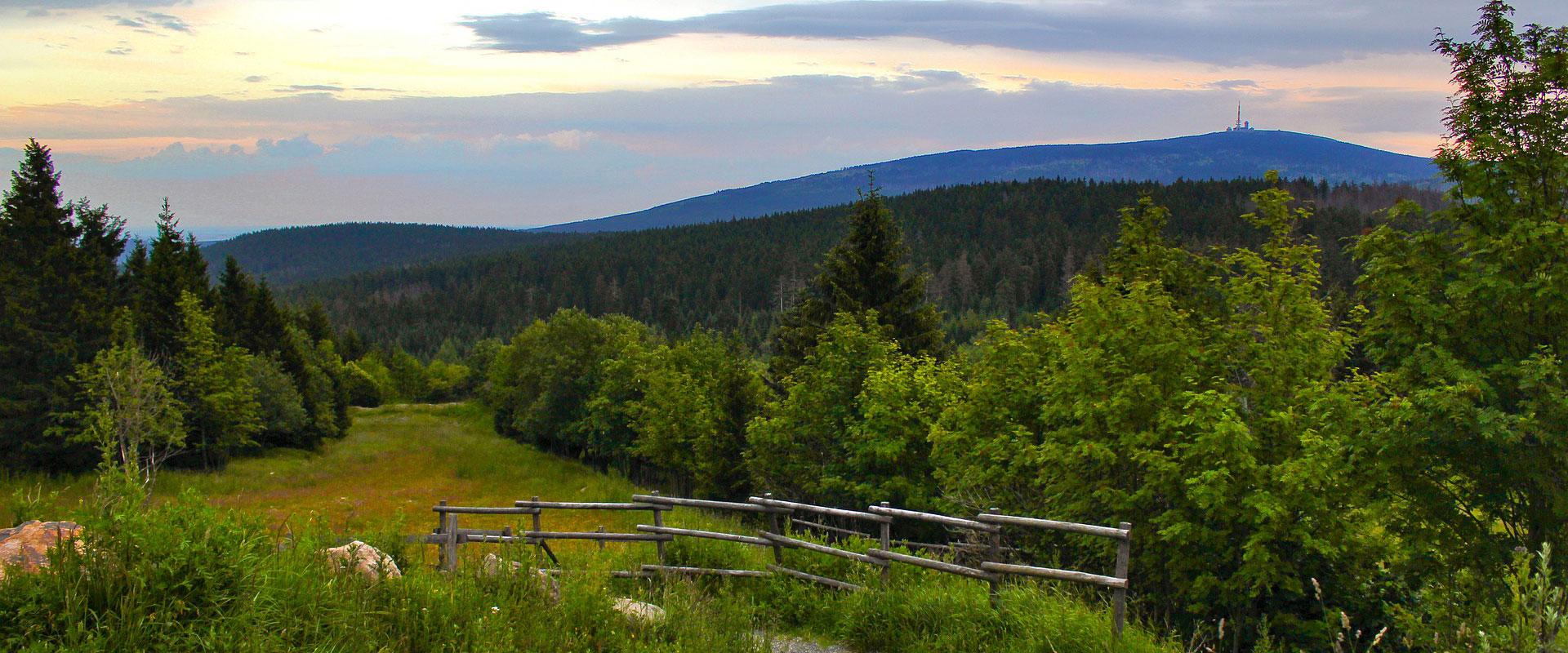 Heksestien i Harzen
