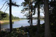 Sø i Harzen