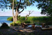 picnicområde ved Furesøen