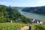 Udsigt over slottene Gutenfels og Pfalzgrafenstein